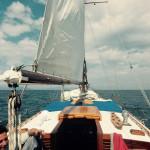Alma sailing